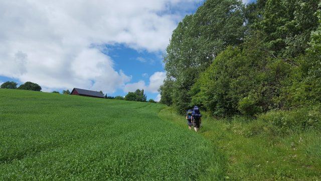 Therese og Eivind på vei opp langs et jorde.