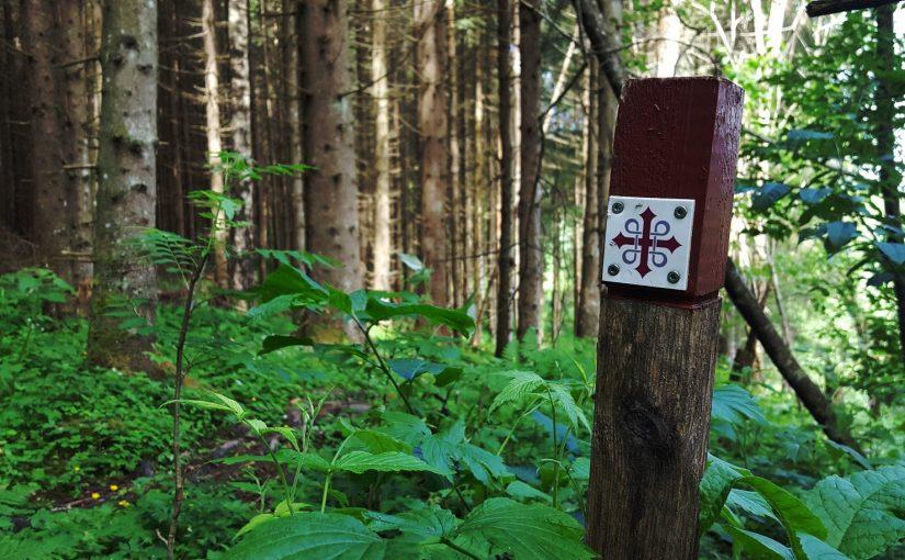 Dag 7 – Biri Øverbygd til Lillehammer