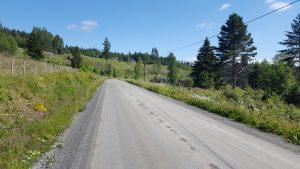 Dagen startet med mange kilometer av denne veien.