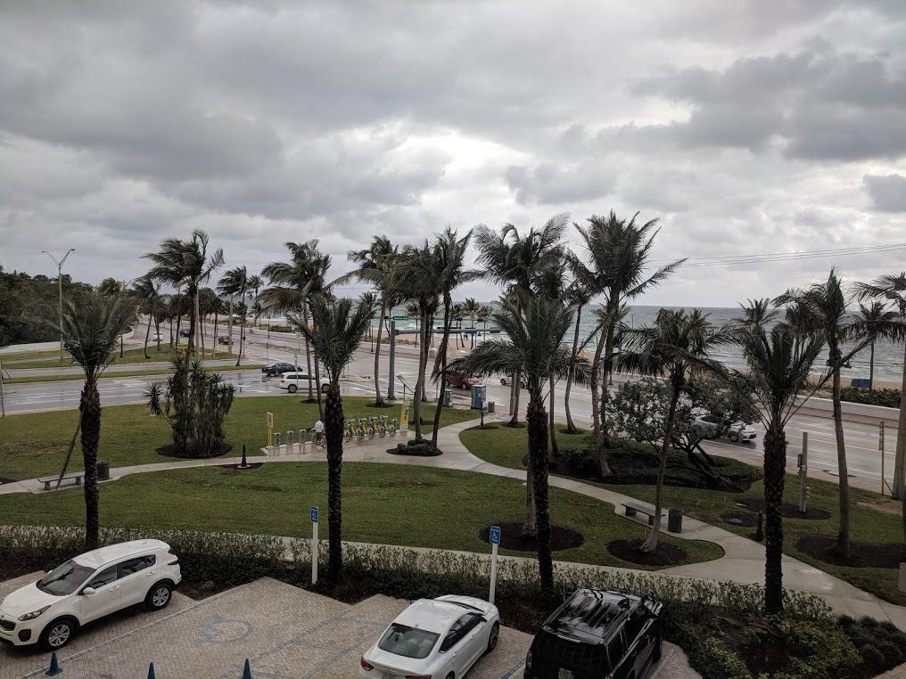 Havutsikt mot stranda i Fort Lauderdale, med palmer og gråvær.